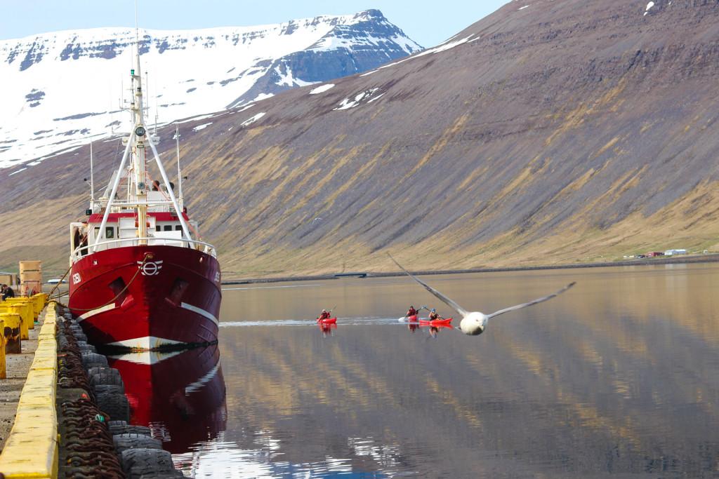 Les fjords de l'ouest - © Sébastien Repéto-20