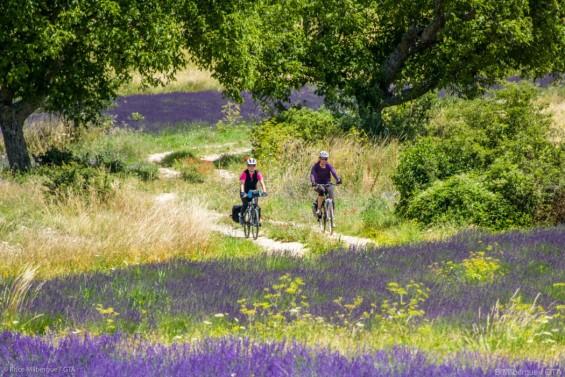 la Provence terre bénie du vélo assisté