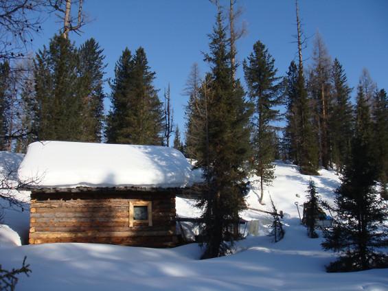 Cabanes de chasse en forêt