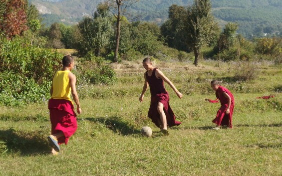Séjour à Dharamsala avec les réfugiés Tibétains en Inde