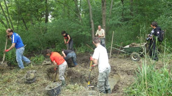 Les volontaires creusent des mares pour les Amphibiens
