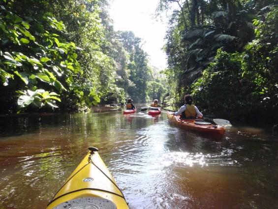 tortuguero-kayak3