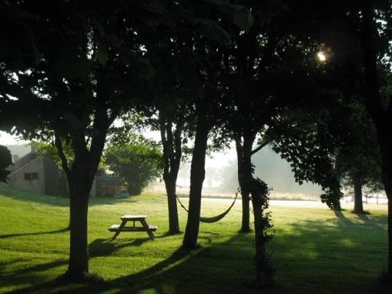 L'Etang des Portes Petit matin