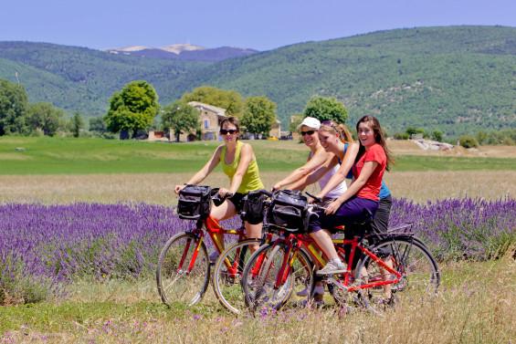 Le vélo en Provence a le vent en poupe (Eric Olive)