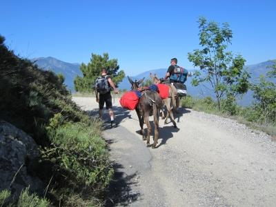 Les âniers, partenaires privilégiés du Grand Site massif du Canigo
