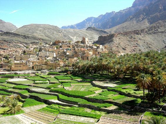 Le wadi Bani Awf Oman