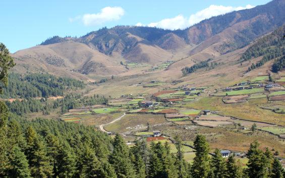 vallée de Phobjikha