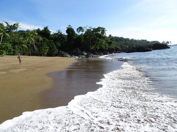 Baie de Drake - Costa Rica