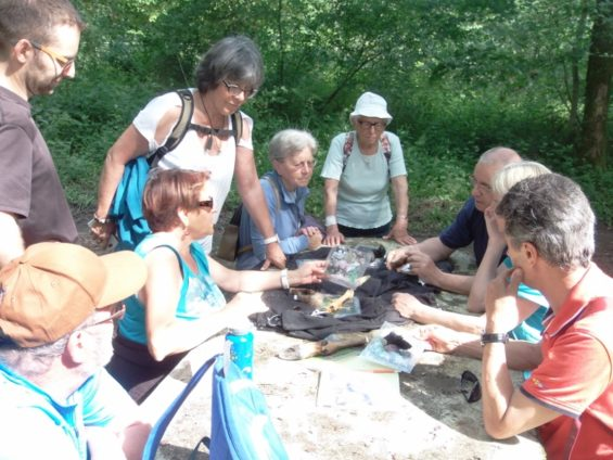 Val de Loire Ecotourisme