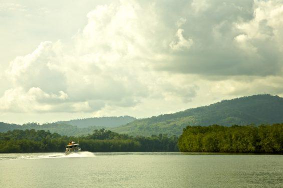 La rivière Sierpe