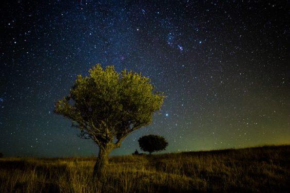 Portugal - Des ricochets entre les étoiles ©Griters
