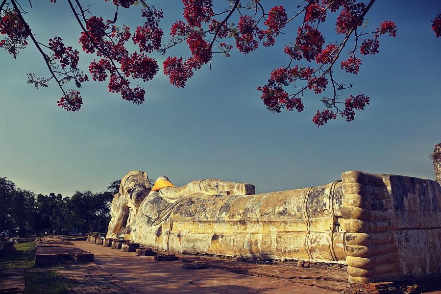 Ayutthaya - Roberto Trombetta