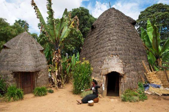 Ethiopie - Arba Minch - Village Dorze - Franck Charton