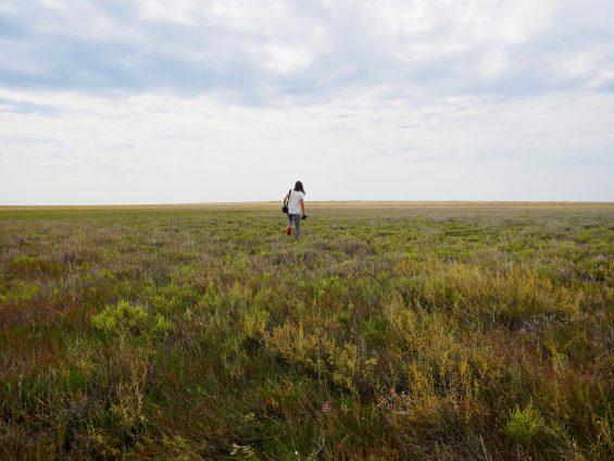 Korgaljyn Kazakhstan