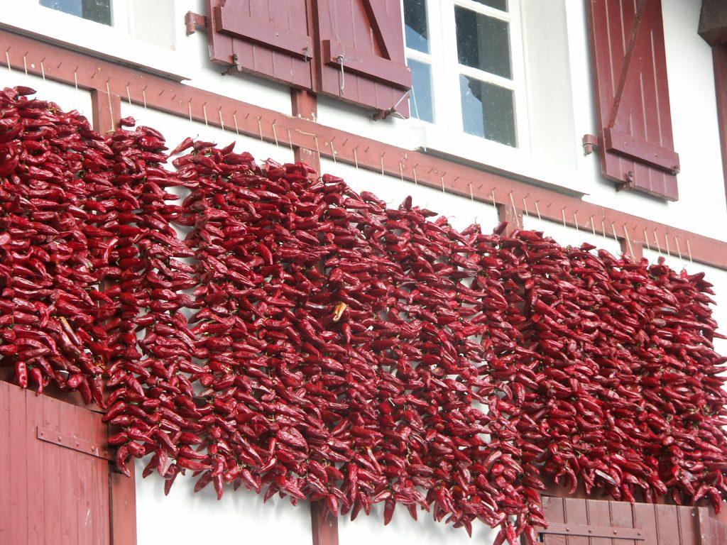 Alignement de guirlande de piments sur un mur