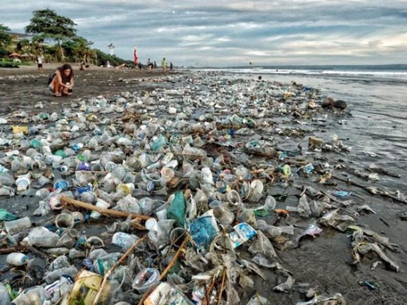 vue sur une plage jonchée de déchets