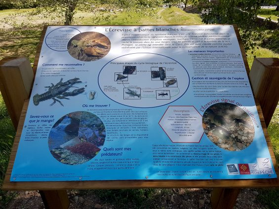 22 Stations Pêche en France, qui sont forcément des Stations Vertes - panneau explicatif sur les écrevisses à pattes blanches