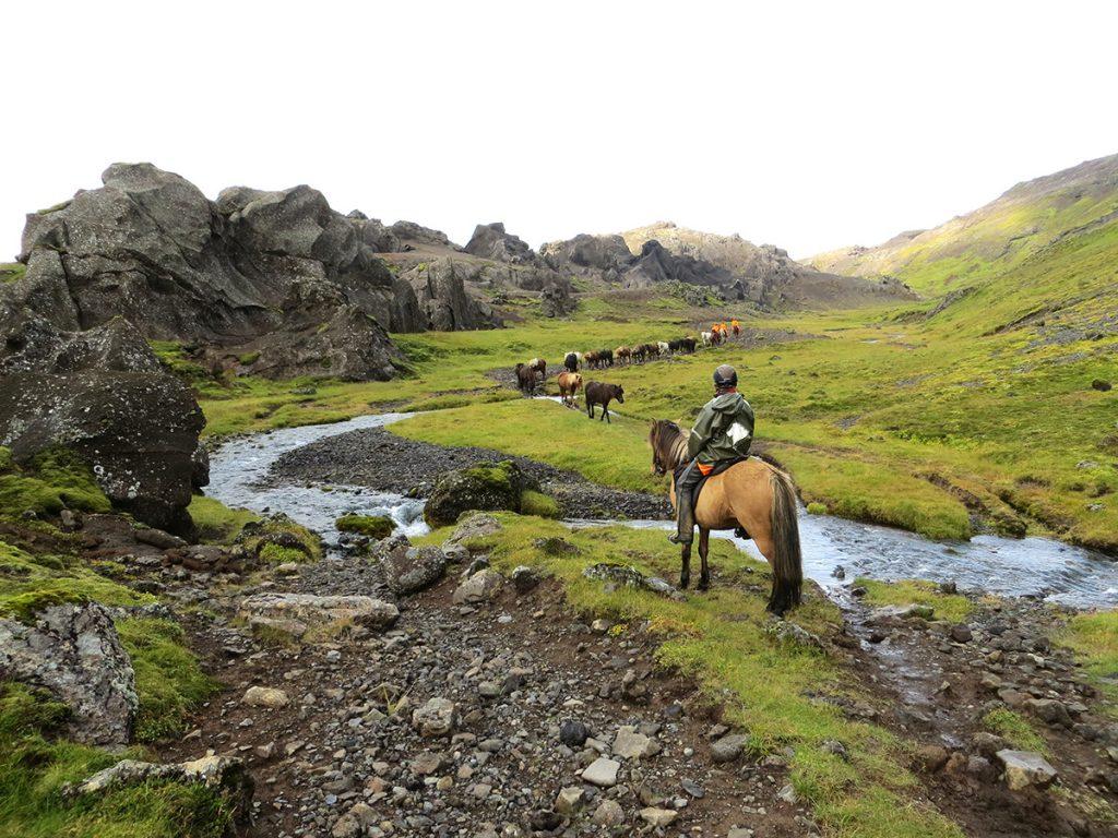 Chemins Solidaires vous balade en itinérance à cheval