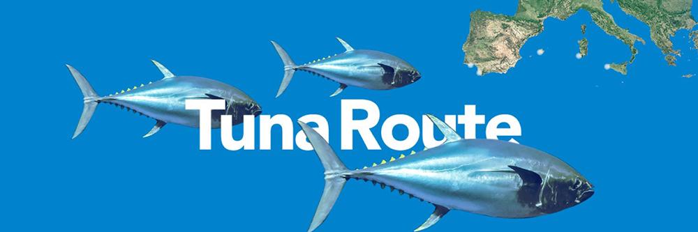 illustration du projet TunaRoute