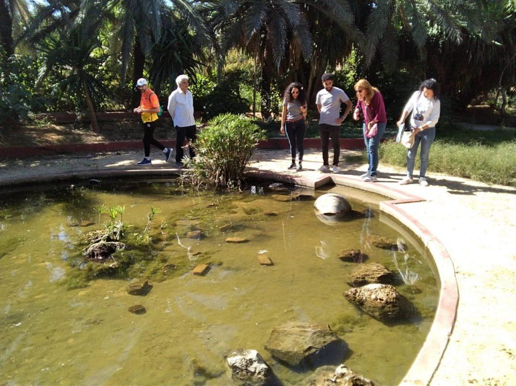 personnes autour des jardins d'Algave en Tunisie