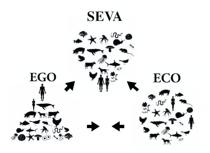 Schéma, Eva, Ego, eco