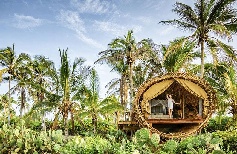 Resort Playa Viva, Tourisme régénératif