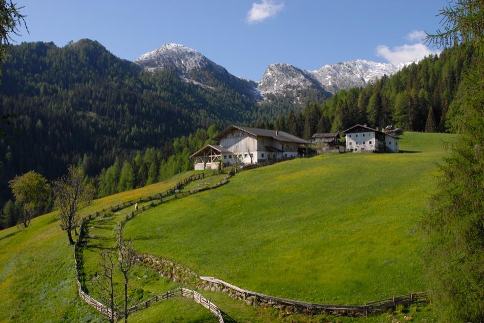 Moos dans le Sud Tyro en Italie © Tourismusverein Passeiertal