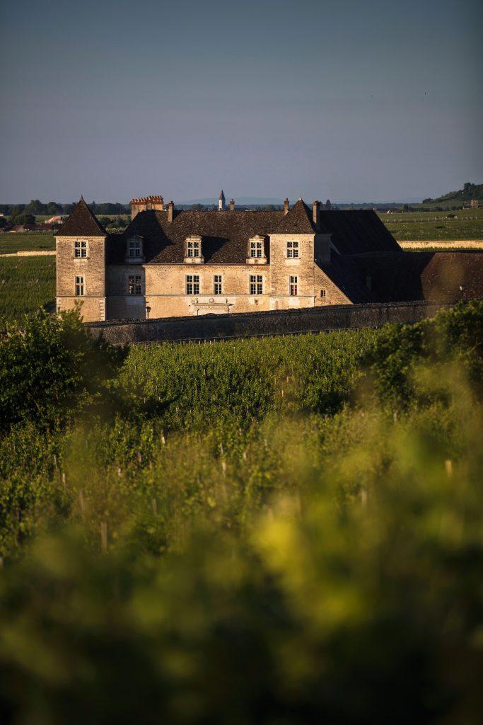 Le Château du clos de vougeot de Matthieu Cellard prise à ras des vignes du domaine