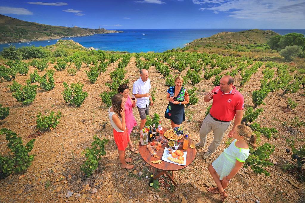 dégustation de vin sur la Côte Vermeille