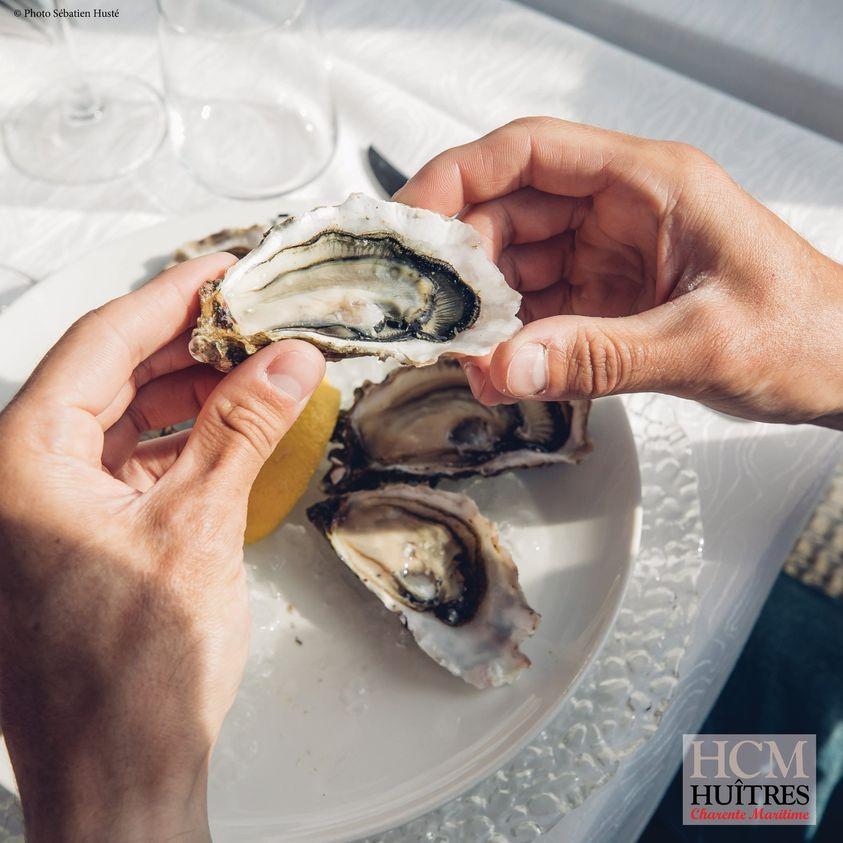La force de l'huître - Ostréo tourisme