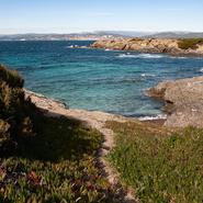 Panorama sur la côte Ouest de l'île des Embiez, photographié lors d'une balade photo scientifique avec Mwanga Vagabonde (Copyright Stéphanie Vigetta)