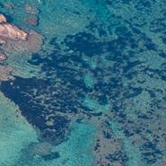La côte rocheuse de Six-Fours-les-Plages - Balade photo aérienne en ULM pendulaire avec Mwanga Vagabonde (Copyright Stéphanie Vigetta)