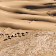 Maroc itinérance dans le désert