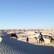 Tunisie Méharée dans le désert blanc