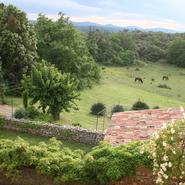 toits et chevaux