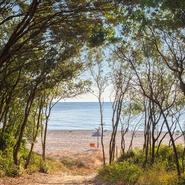 Bagheera plage 3
