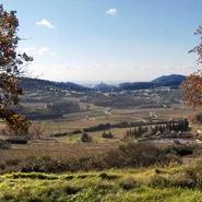 vue-depuis-terrasse-gite-de-la-colline-le-barroux