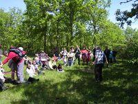 Les Rencontres Printemps Nature Site Touristique