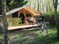 Camping les Saules Camping